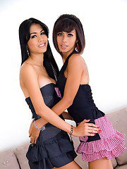 Wild shemale on shemale action with cute ladyboy Palm and tranny gf