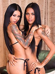 Tattooed ladyboy Rose and transsexual friend enjoy shemale on shemale