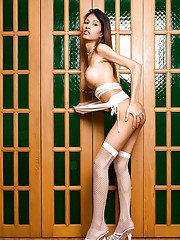 Skinny Thai tranny Dada posing in stockings and toying her hairy pussy