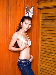 Busty brunette Thai shemale Jenny posing in her bunny costume