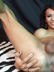 Busty Asian tranny showing off her big dick and tight hairy asshole