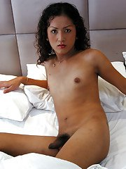 Petite curly haired Asian ladyboy jerking off her hard hairy dick