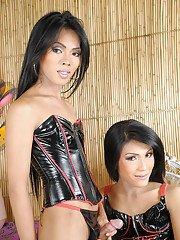 A hot ladyboy gives head to another well hung trannie until explosion