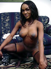 Busty Ebony shemale Alicia showing of her big boobs in stockings