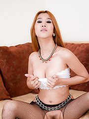Ladyboy Jib Crotchless Stockings