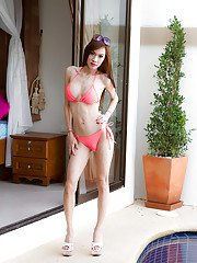 Ladyboy A Poolside Princess