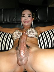 Ladyboy Jasmine Big Cock on Top
