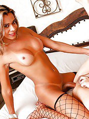 Alex Victor gets screwed by Latina shemale Karol Kovalick in stockings