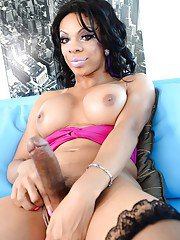 Well hung ebony shemale Sasha Strokes her big cock while in lingerie