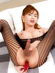 Dirty Thai ladyboy Pink fucking her tight ass with a toy in pantyhose