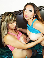 Sexy shemale Nina Stronghold slides her tranny dick into womans pussy