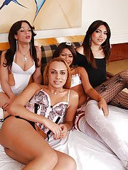 Latina shemale on shemale groupsex with Bianca Drumond and Sandy Lopez