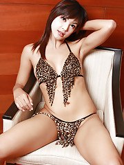 Brunette Asian ladyboy Aum 3 freeing big tits and big cock from lingerie